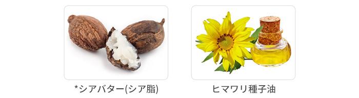 シアバター、ヒマワリ種子油