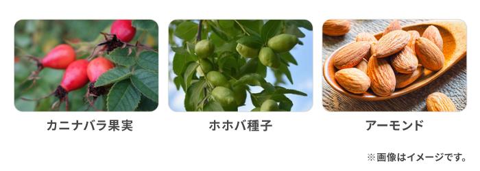 カニナバラ果実 ホホバ種子 アーモンド