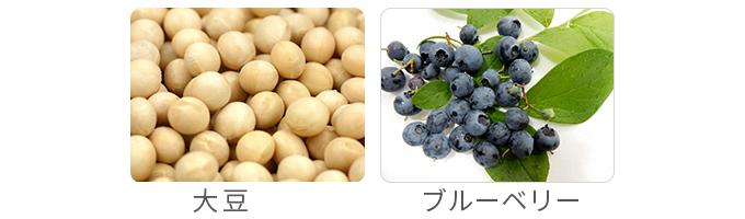 大豆とビルベリー