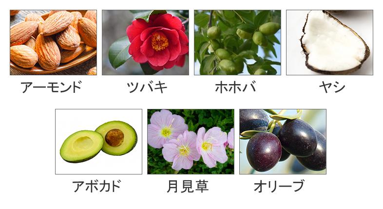 植物性オイルイメージ画像